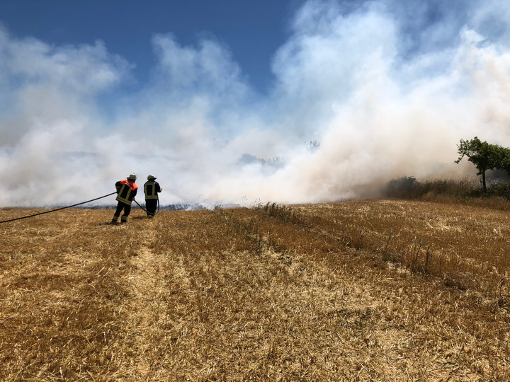 Flächenbrand Gemarkung Motzfeld