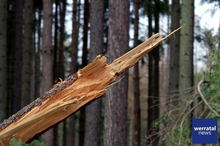 Sturmtief Sabine zieht ohne größere Schäden vorbei